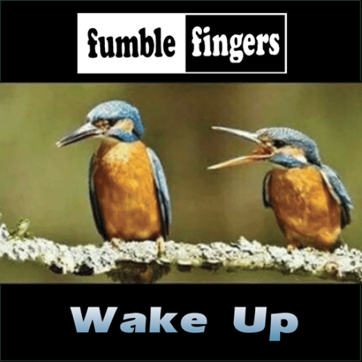 wake-up-cover